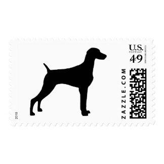 Perro de Weimaraner (en negro) Estampilla