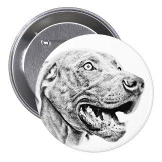 Perro de Weimaraner Pins