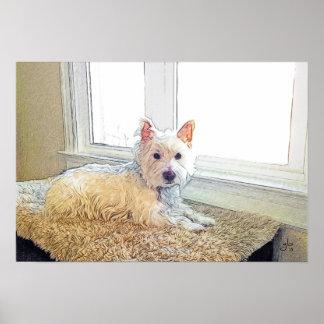 Perro de Westie que se sienta por la ventana, arte Póster