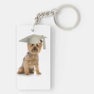 Perro de Yorkie con el gorra de la graduación