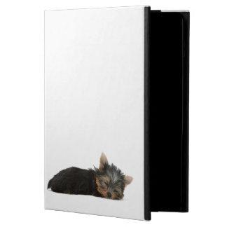 Perro de Yorkshire Terrier, caja del aire del ipad