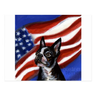 Perro del americano de Boston Terrier Tarjetas Postales
