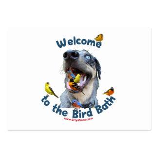 Perro del baño del pájaro plantillas de tarjetas personales
