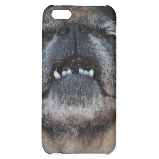 Perro del barro amasado con la caja abierta boca d