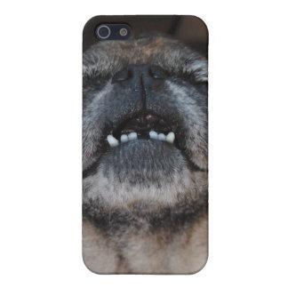 Perro del barro amasado con la caja abierta boca d iPhone 5 coberturas