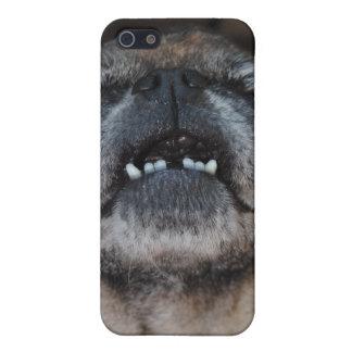 Perro del barro amasado con la caja abierta boca iPhone 5 carcasas