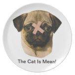 Perro del barro amasado con la placa de la tirita platos de comidas