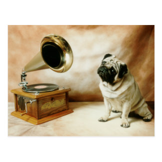 Perro del barro amasado de RCA Tarjeta Postal