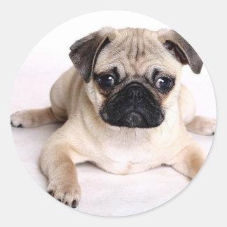 Perro del barro amasado etiquetas redondas