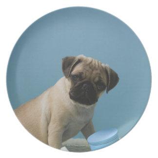 Perro del barro amasado que se sienta en cama por  platos de comidas