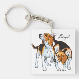 perro del beagle llavero cuadrado acrílico a una cara