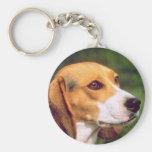 Perro del beagle llavero redondo tipo pin