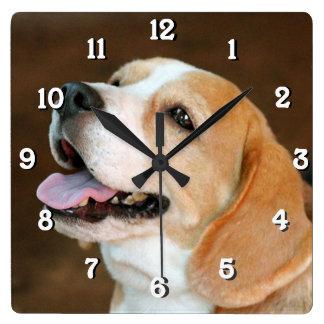 Perro del beagle relojes
