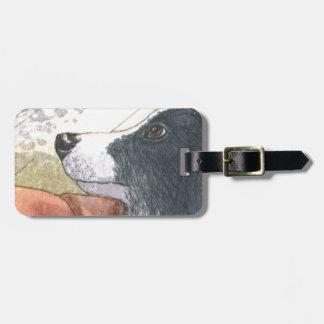 Perro del border collie que espera en coche etiquetas maleta