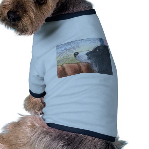 Perro del border collie que espera en coche prenda mascota