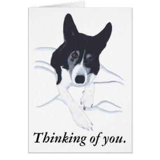 Perro del border collie que piensa en usted tarjeta de felicitación