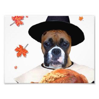Perro del boxeador de la acción de gracias fotografia