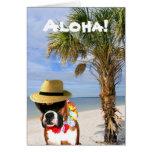 Perro del boxeador de la hawaiana en la tarjeta de