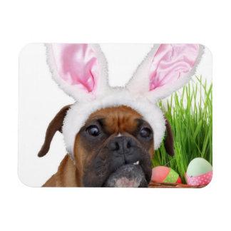 Perro del boxeador de Pascua Iman Rectangular