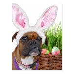Perro del boxeador de Pascua Postal