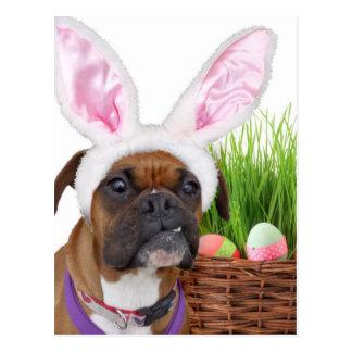 Perro del boxeador de Pascua Postales