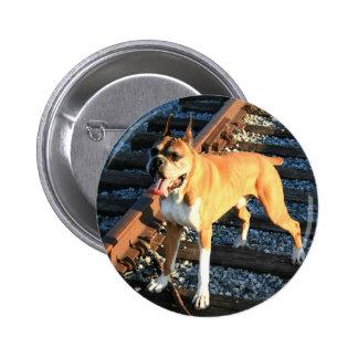 Perro del boxeador en el botón de la pista de ferr pin redondo de 2 pulgadas