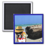 perro del boxeador en el imán de la playa