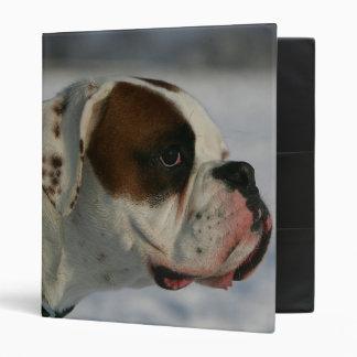 Perro del boxeador en la nieve