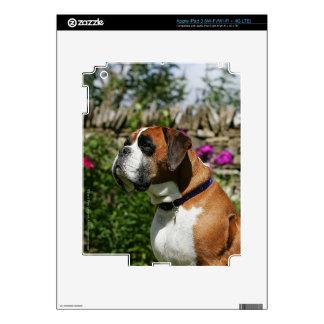 Perro del boxeador en las flores iPad 3 pegatina skin