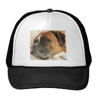 Perro del boxeador gorra