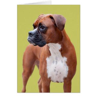 Perro del boxeador tarjeta de felicitación