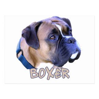 Perro del boxeador tarjetas postales