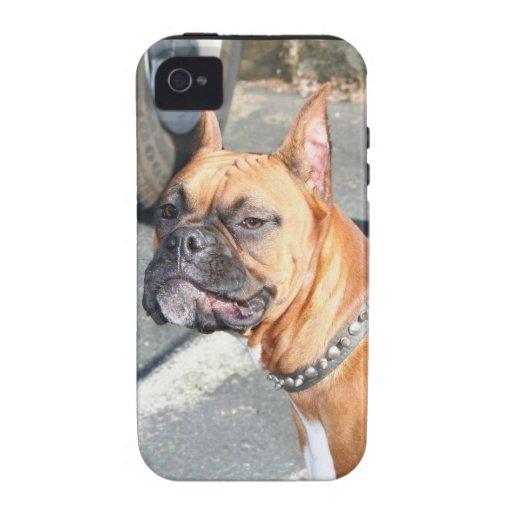 Perro del boxeador vibe iPhone 4 carcasa