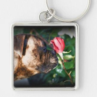 Perro del boxeador y llavero color de rosa