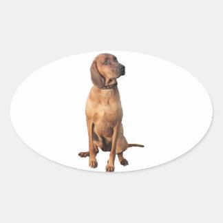 Perro del Coon de Redbone (a) Calcomanía De Óval