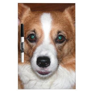 Perro del Corgi Tablero Blanco