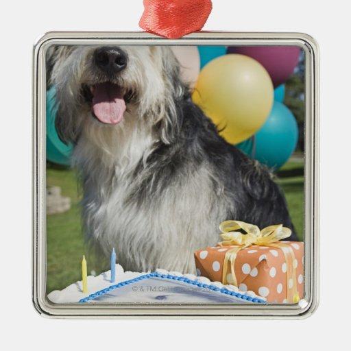 Perro del cumpleaños adorno navideño cuadrado de metal