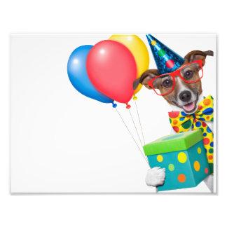 Perro del cumpleaños con el lazo y los vidrios de arte fotográfico