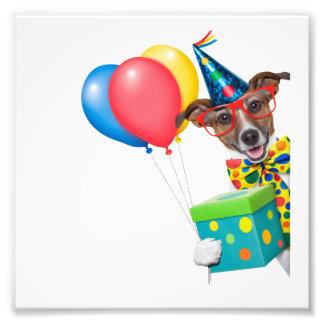 Perro del cumpleaños con el lazo y los vidrios de arte fotografico