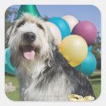 Perro del cumpleaños pegatina cuadrada
