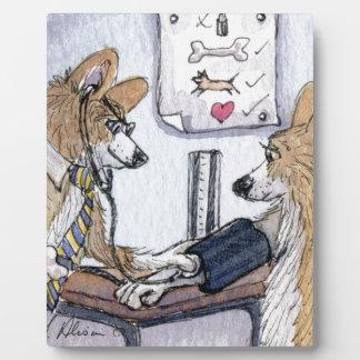 Perro del doctor Galés Corgi que comprueba la pres Placas
