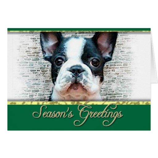 Perro del dogo francés tarjeta de felicitación