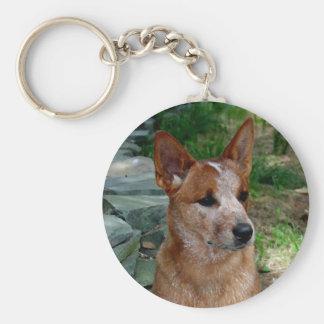 Perro del ganado llavero redondo tipo pin