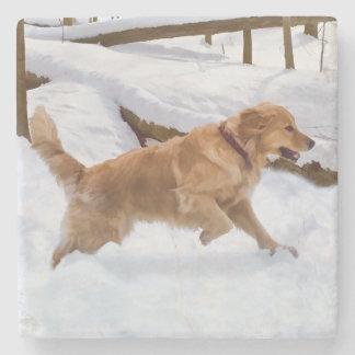 Perro del golden retriever en la nieve posavasos de piedra
