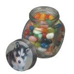 Perro del husky siberiano frascos de cristal jelly belly