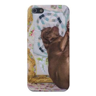 Perro del labrador retriever, durmiendo iPhone 5 funda