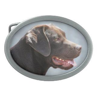 Perro del labrador retriever hebillas de cinturón ovales