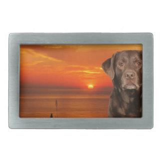 Perro del labrador retriever que se sienta al lado hebilla de cinturon rectangular