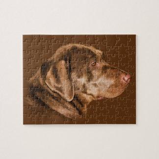 Perro del labrador retriever, rompecabezas, person puzzle