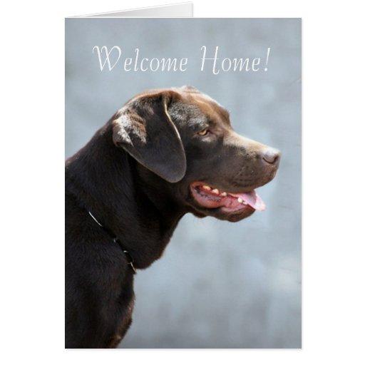 Perro del labrador retriever tarjeta de felicitación